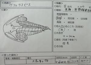 DSC00766.jpg